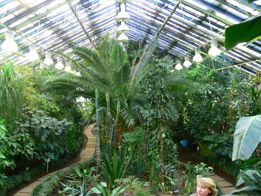 Заполярный ботанический сад-институт